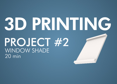 3d Printing Project #2