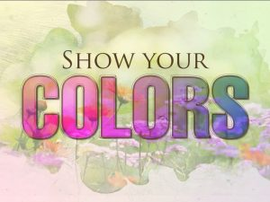 Show Your Colors